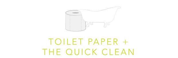 Toilet Paper Plus The Quick Clean
